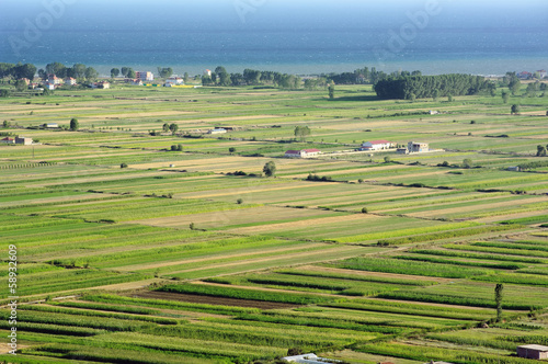 Cultivated Land In Albania