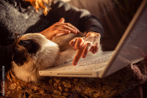 Woman working on laptop with her birman cat