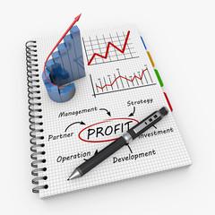 Profit as concept