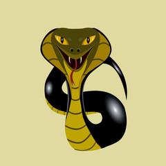 aggressively cobra