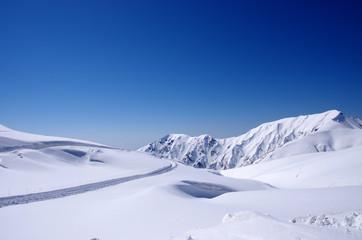 絶好の立山黒部アルペンルート