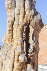 sculpture man emerging from inside a tree