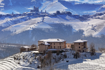 Hills and vineyards of Piedmont covered with snow.