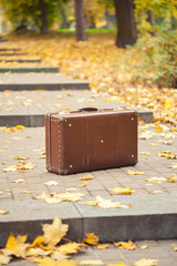 vintage suitcase on alley in autumn park