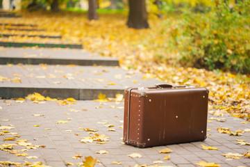 vintage suitcase on alley in autumn park