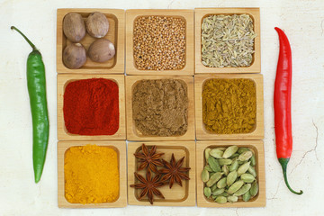 Selection of Indian spices and fresh chilies