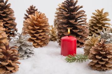 Kiefernzapfen und Kerze im Schnee