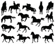 Black silhouettes of horses, vector illustration