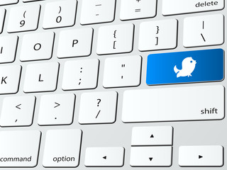 Bird tweet computer keyboard icon