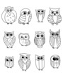 Cartoon owls and owlets