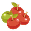 apple isolated illustration