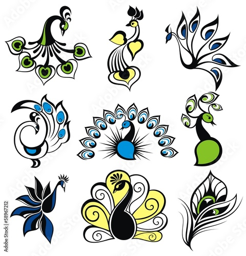 Set of peacock birds