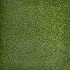 green leather texture closeup