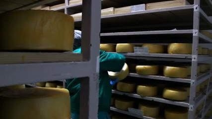 Cheese storehouse
