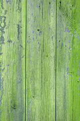 Holz mit Moos Textur