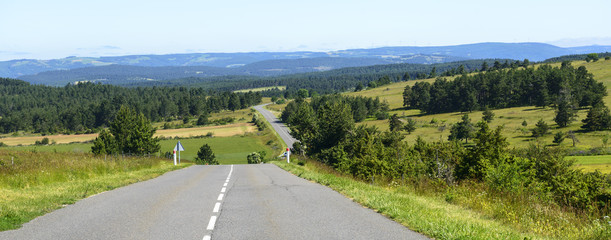 Road in the Lozere mountains