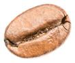 Coffee Bean Closeup