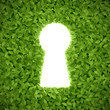 Green hedge with keyhole