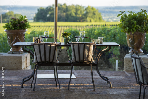 Gastronomy - Restaurant - Luxury - Terrace in summer - Vineyard