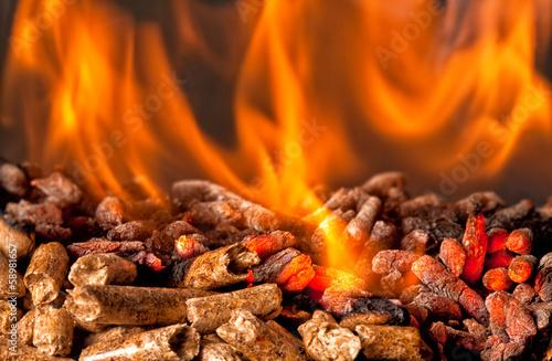 wood pellet - 58981657