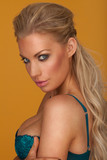 Provocative blond young woman wearing blue bra