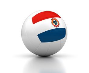 Paraguayan Volleyball Team