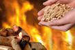 Hand mit brennenden Holzpellets, Feuer und Glut - 58989690