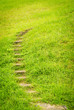 stairway on green grass.