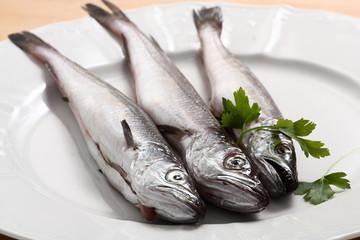 Pesce azzurro nasello