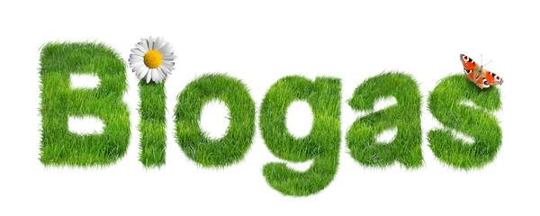 Biogas mit Wiese