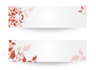 Vector illustration of banner with leaves