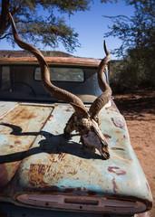 Oldtimer with Kudu head, Namibia