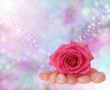 Rose quartz & pink rose on soft focus background