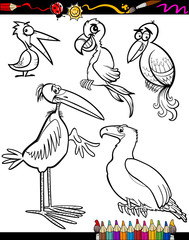 Cartoon Birds for Coloring Book