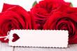schöne rote rosen mit weissem schild herz textfreiraum