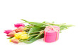 Posy of tulips flowers with gift box