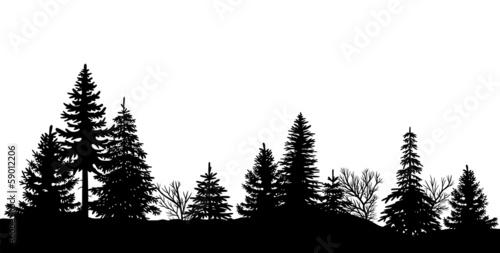 Schwarze Silhouette eines Waldes, Vektor und freigestellt - 59012206