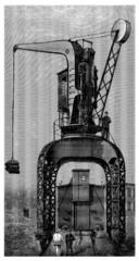 Crane - Krane - Grue - 19th century