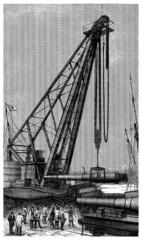 Crane - Grue - Krane - 19th century