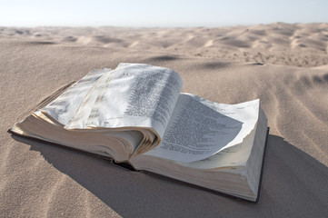 Bible in desert