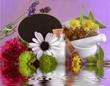 Globuli mitTafel und Pflanzen