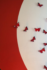 Red and white butterfly decoration