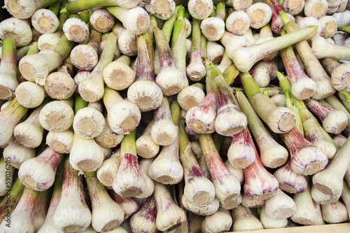 Garlic in the Naschmarkt, Vienna