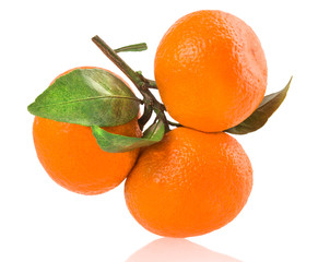 ripe tangerines with leaves isolated on white