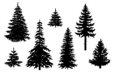 Set mit Nadelbäumen, Vektor und freigestellt