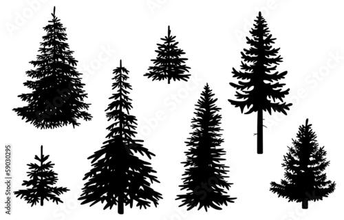 Set mit Nadelbäumen, Vektor und freigestellt - 59030295