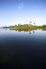 Remote Brazilian River Calm Reflection