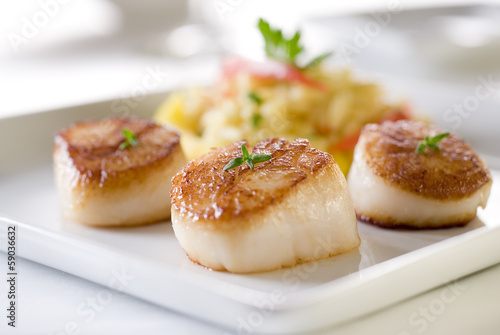 Fotobehang Schaaldieren Seared sea scallops with orzo and vegetables.