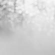 Zdjęcia na płótnie, fototapety, obrazy : Lights grey background