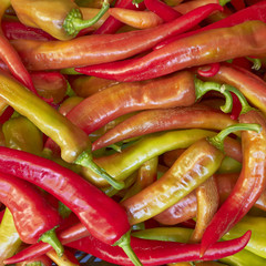 red hot chilli peppers for sale